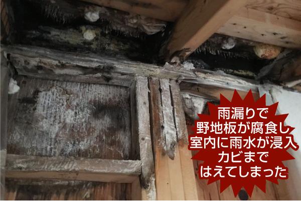 雨漏りで野地板が腐食し室内に雨水が浸入カビまで はえてしまった