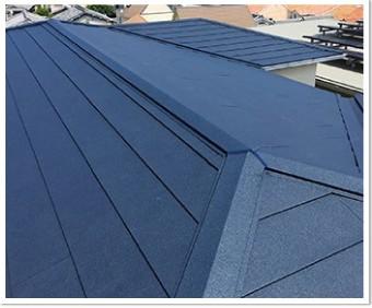 SGLの屋根