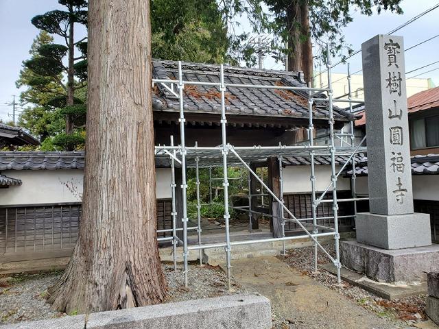 山門改修用足場設置です