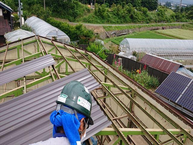 長野県飯島町ハウス屋根吹き替え3