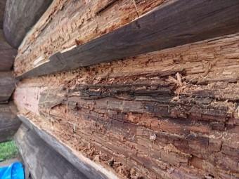 長野県飯島町ログハウス丸太外壁修繕12