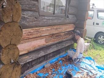 長野県飯島町ログハウス丸太外壁修繕9