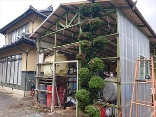 長野県飯島町農業用ポリカ外壁交換5