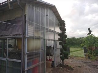 長野県飯島町農業用ポリカ外壁交換3
