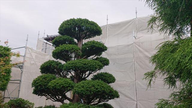 長野県駒ヶ根市モルタル外壁塗装足場作業2