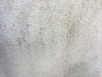 181129-162958025_R-columns2