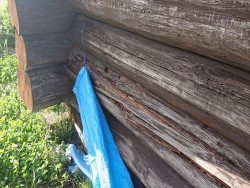 長野県飯島町ログハウス丸太外壁修繕6