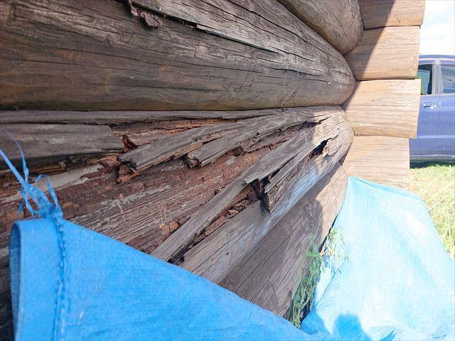 長野県飯島町ログハウス丸太外壁修繕4