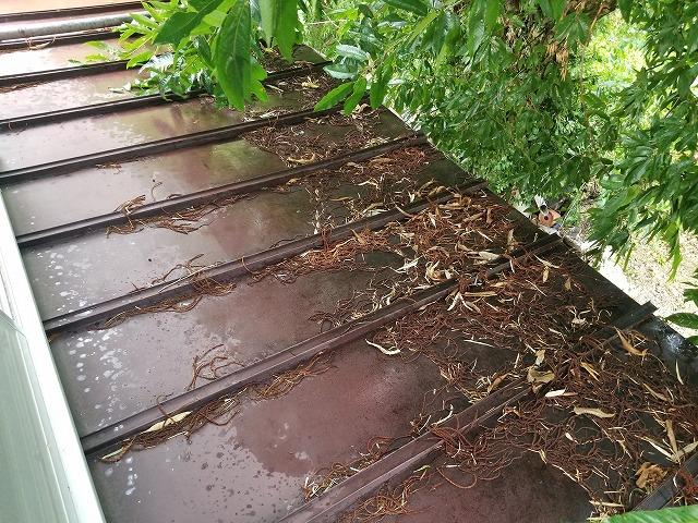 三晃葺き屋根トタンの点検です