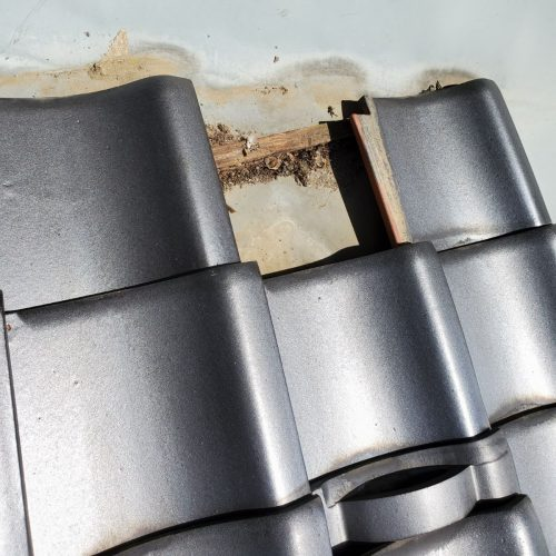 飯田市内で屋根外壁塗装工事とシロアリ駆除を行いました。-1.現地調査