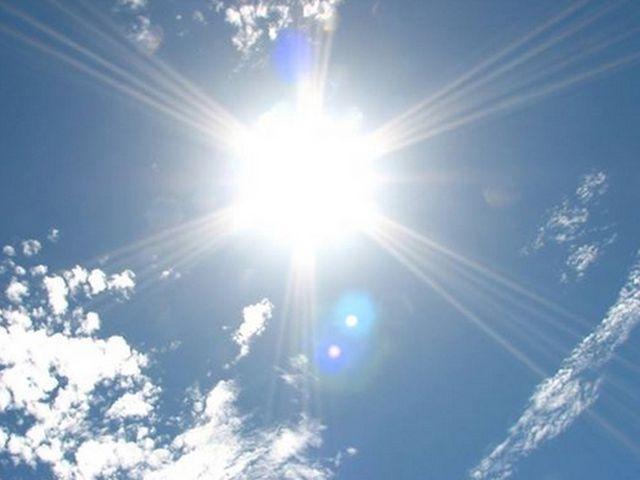 太陽の直射日光を避ける