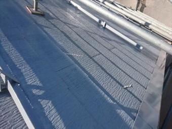 長野県中川村ログハウス屋根下塗り2
