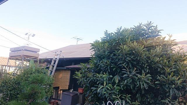飯田市北方屋根葺き替えコンパネ貼り1
