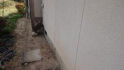 飯田市下久堅外壁塗装現調6