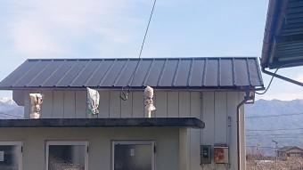 松川町トタン屋根上塗り4
