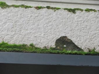 飯田市上殿岡 屋根外壁木部塗装現調6