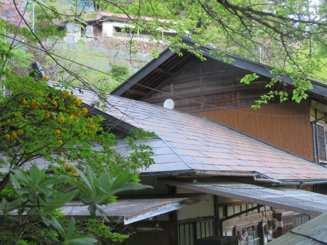 トタン屋根現調1