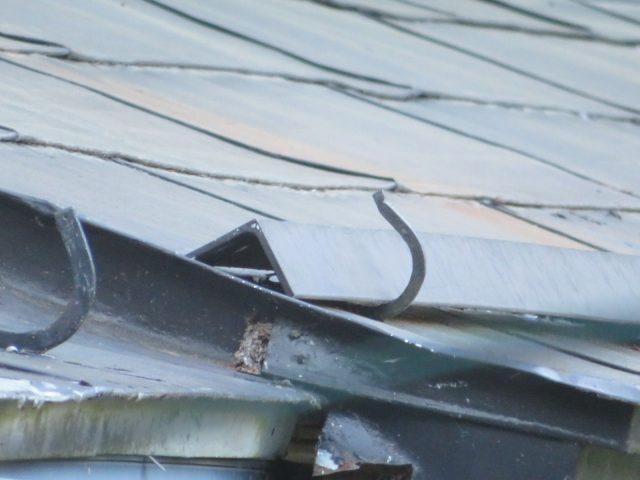 トタン屋根現調2