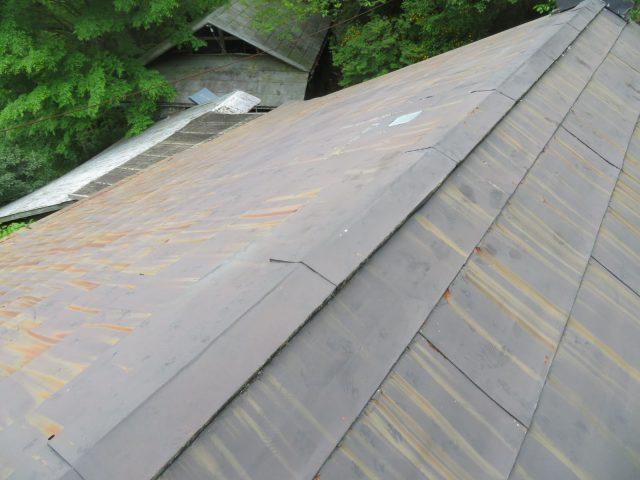 トタン屋根現調6