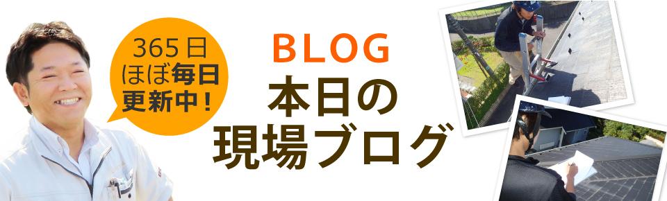 飯田市、伊那市やその周辺エリア、その他地域のブログ