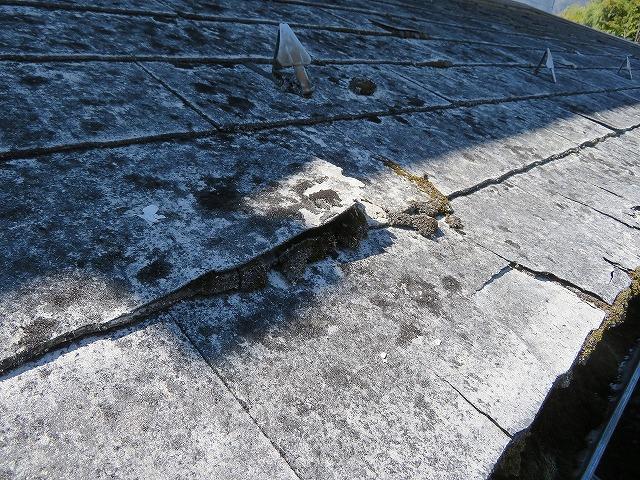 コケの発生したスレート屋根